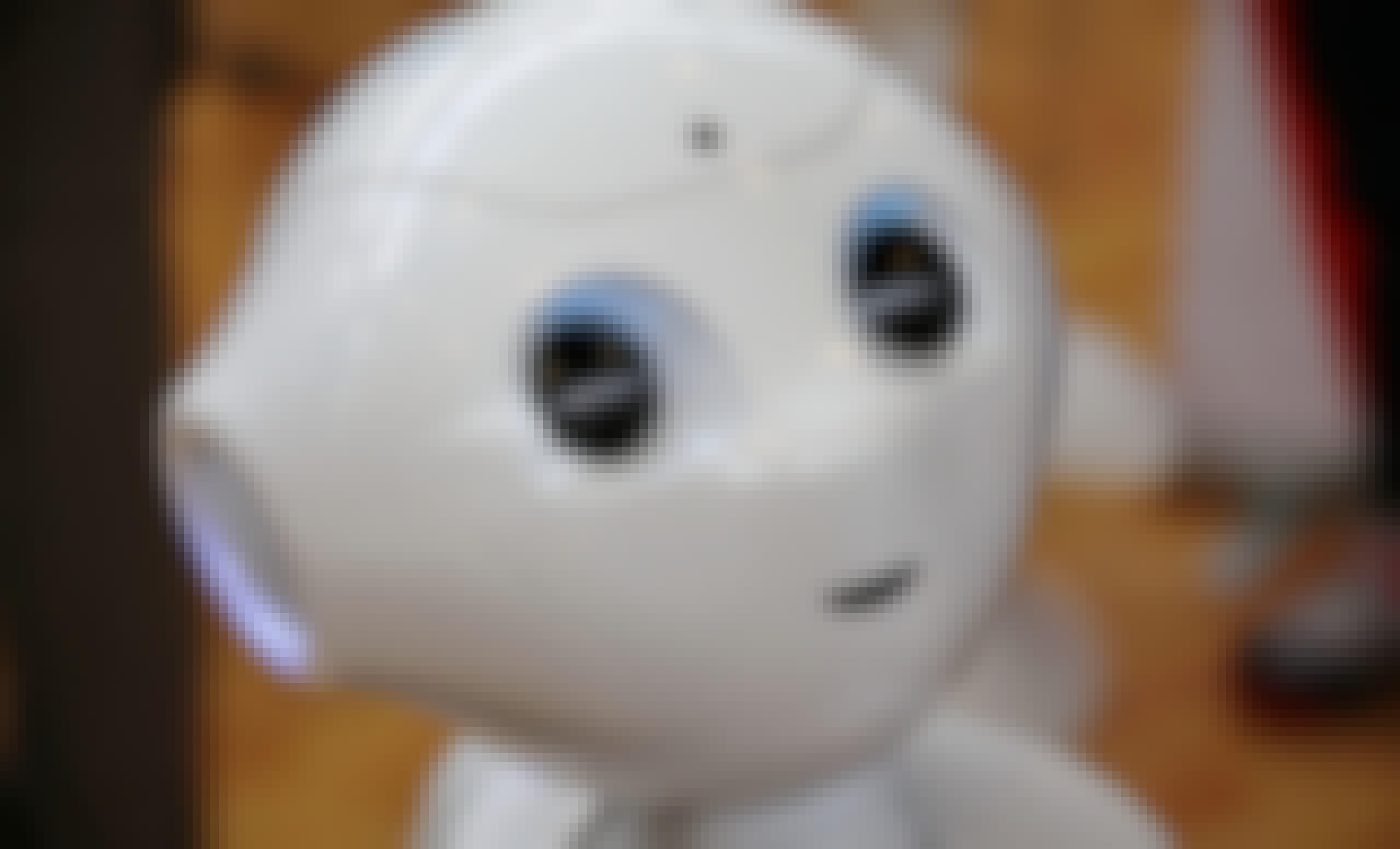 Pepper Robot Softbank